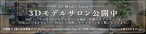 3Dモデルサロン